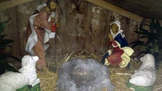 Police in Haverhill, Massachusetts are trying to find who's responsible for stealing the baby Jesus from a nativity scene outside a local church, and replacing it with a real pig's head.
