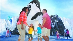 On May , visitors to SeaWorld Orlando will be able to live among the penguins at the highly anticipated attraction -- Antarctica: Empire of the Penguin attraction.