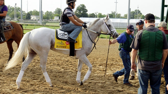 Kentucky Derby Horse _Pata.jpg