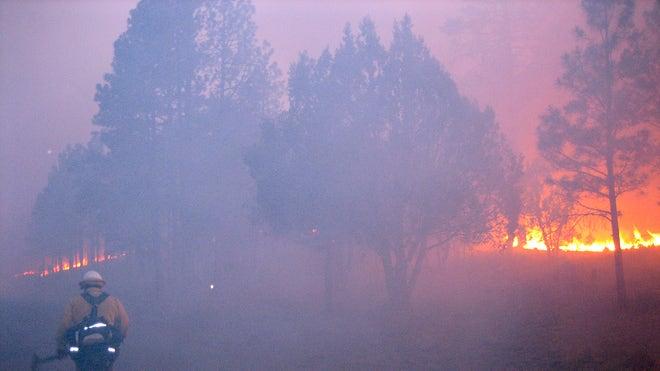 Western Wildfires_Pata.jpg