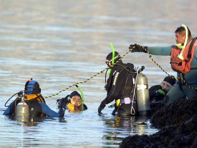 Laci Peterson Dead Body Pictures Divers searching for laci