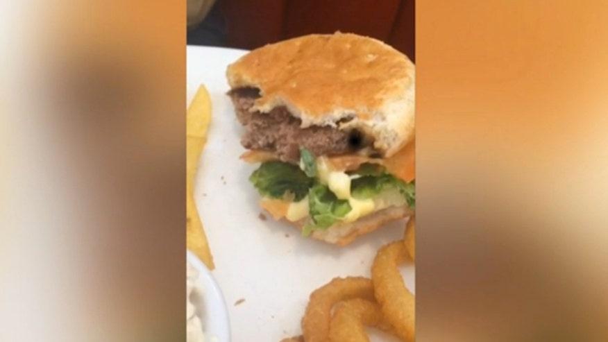 cheeseburgerbug660.jpg