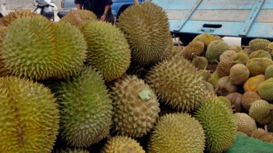 durian_fruit.jpg