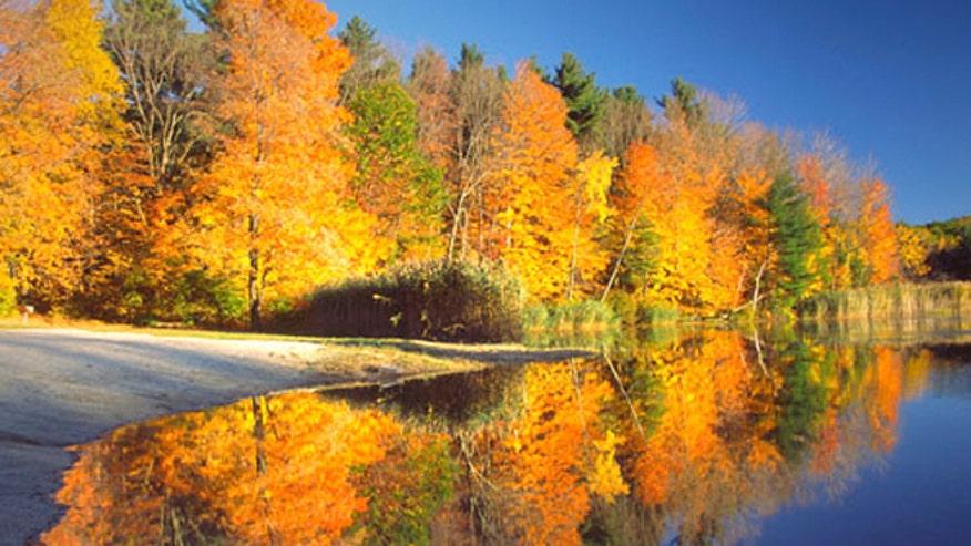 fall_foliage_istock.jpg