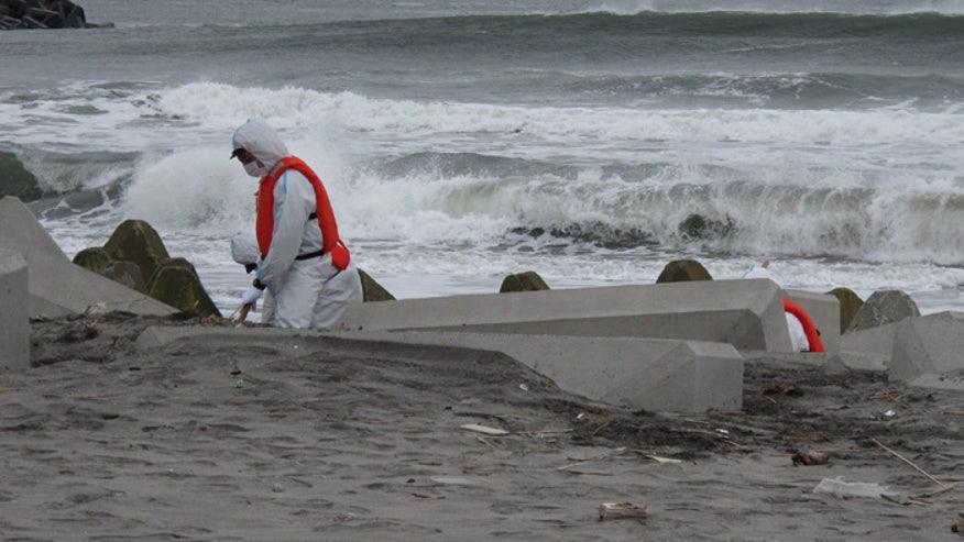 fukushima4.jpg