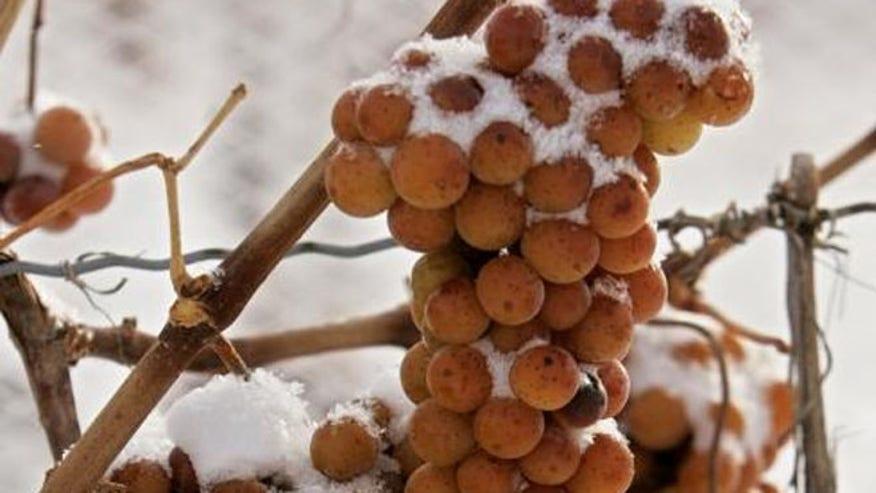 ice_wine.jpg