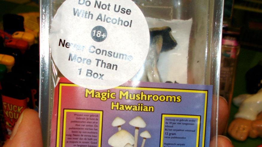 magicmushrooms661.jpg