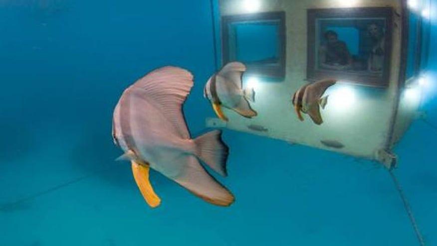 underwater_hotel2.jpg