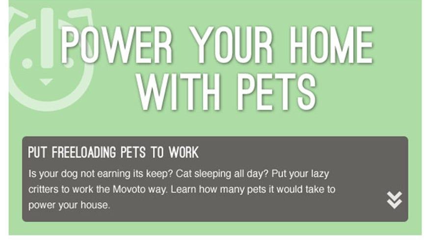 Movoto_powerwpets.jpg