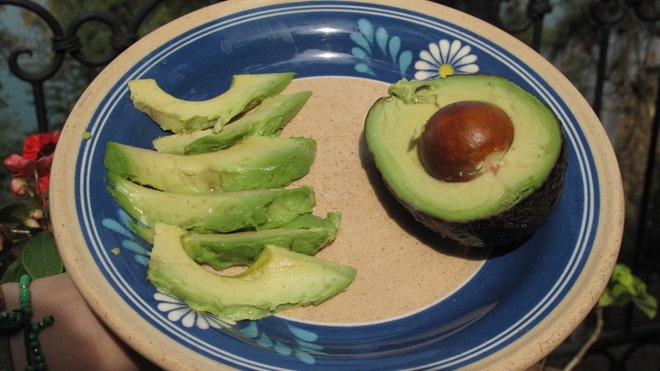 Avocado Latino Front.jpg