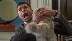 """The topic of his upcoming comedy """"Nine Lives"""" definitely hits Mark Consuelos close to home. Not because he will become a cat, but because he definitely knows a thing or two about having to balance his career and family life."""