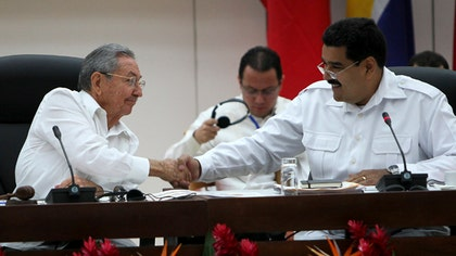 The countries belonging to the Bolivarian Alliance for the Peoples of Our America, or ALBA, on Monday here agreed on an action plan to combat - and protect themselves from - Ebola at a special summit at which Cuba announced the deployment of two new medical brigades to Africa to fight the epidemic.