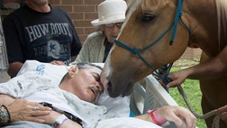 Before his death, Roberto Gonzalez, a rancher from Premont, Texas, was receiving care at San Antonio's Audie Murphy Veterans Hospital when the staff asked if he and his family if there was anything he wanted to cheer him up.