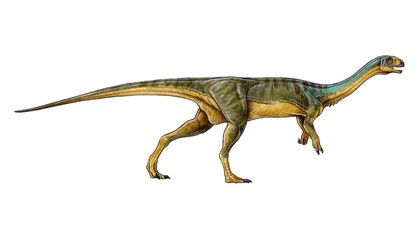 """The unusual creature, named """"Chilesaurus diegosuarezi,"""" belongs to the same dinosaur group as Tyrannosaurus rex – theropods – and was a plant-eater."""