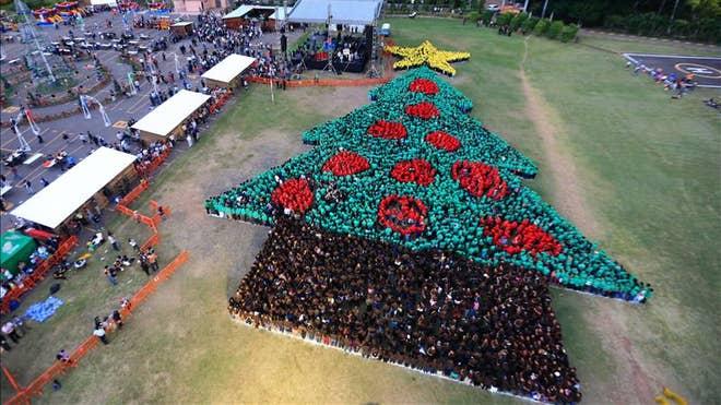 b6b66c89a190 Хамгийн том сүлд мод. Гондурасчууд дэлхийн ...