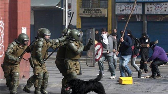 ChileanDog.jpg