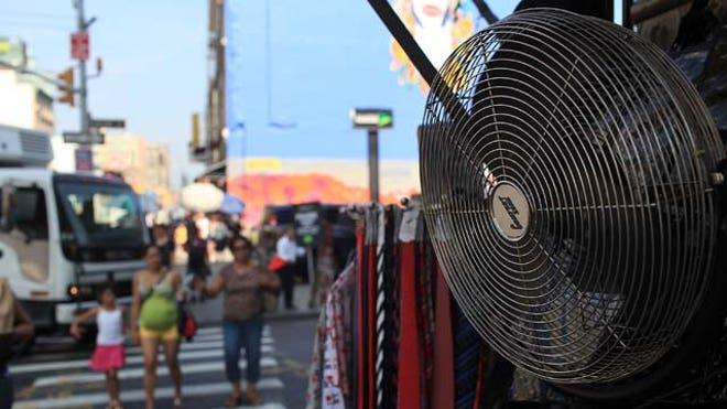fan New York City