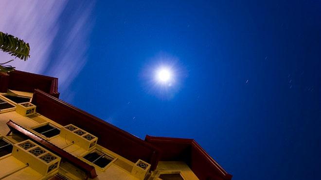 moon_gazer.jpg