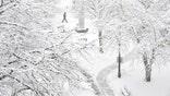 Winter_Weather_Pennsylvania__erika.garcia@foxnewslatino.com_71.jpg