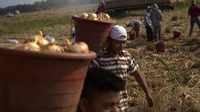 AL-farmers_art.jpg