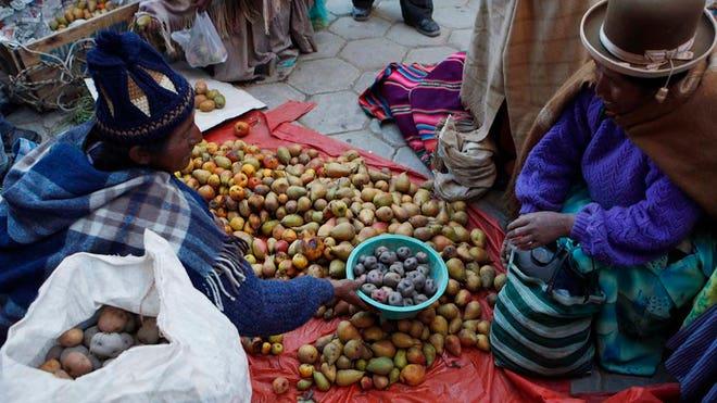 Bolivia-Food-Crisis4