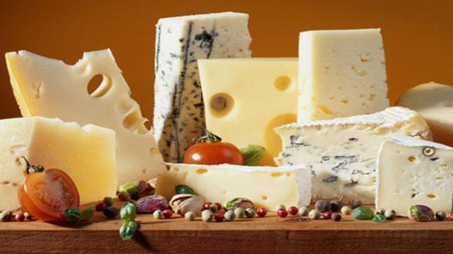 Cheese_web