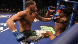 Anthony Showtime Pettis and UFC lightweight champion Benson Henderson look to put a highlight reel kick from their first fight past them at UFC .