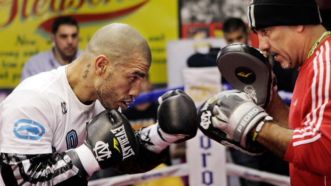 Cotto Boxing.jpg
