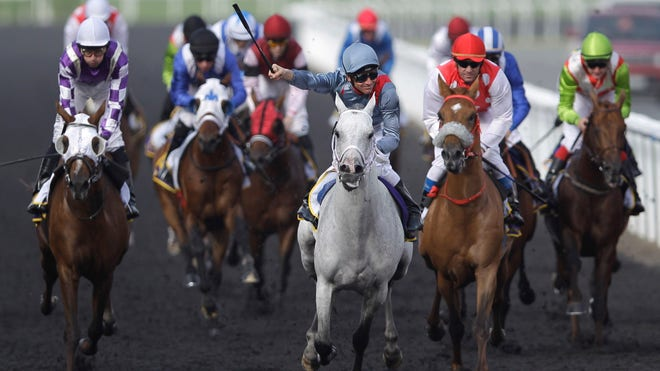 Dubai World Cup Horse Race.jpg