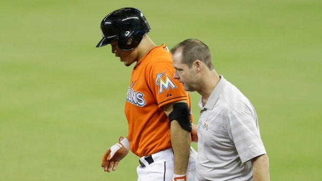 Mets Marlins Stanton Injured.jpg