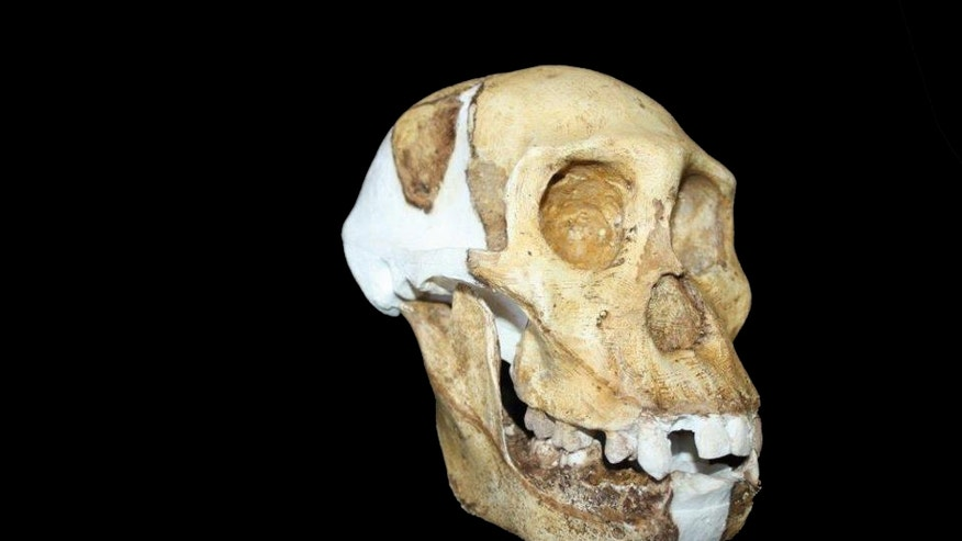 piltdown man fluorine dating According to henry fairfield osborn, piltdown man, the famous fake as late as 1949, the year a new dating technology, the fluorine test.