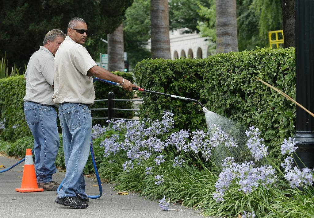 California regulators hope fines up to $500 deter water waste during state's severe drought