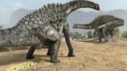 Researchers in northeastern Spain say theyve uncovered hundreds of dinosaur egg fossils, including four kinds that had never been found before in the region.