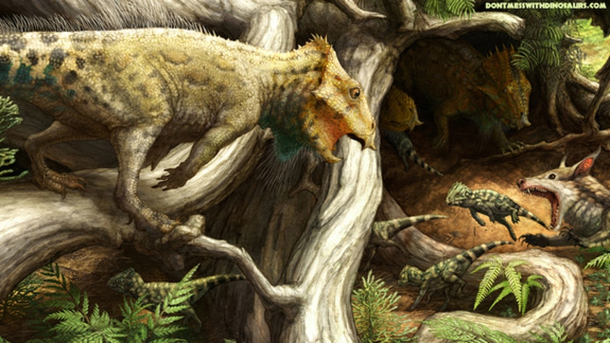 Oldest horned dinosaur in North America was the size of a crow