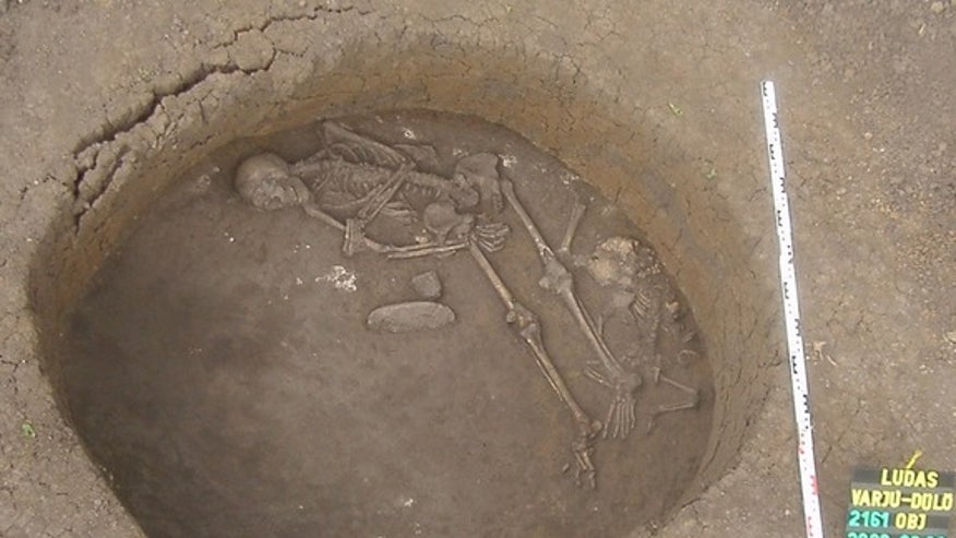 Ancient human skulls reveal when Europeans could drink milk