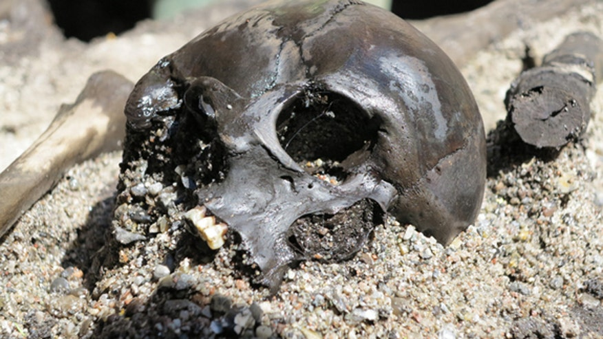 Warriors' bones reveal bizarre Iron Age rituals