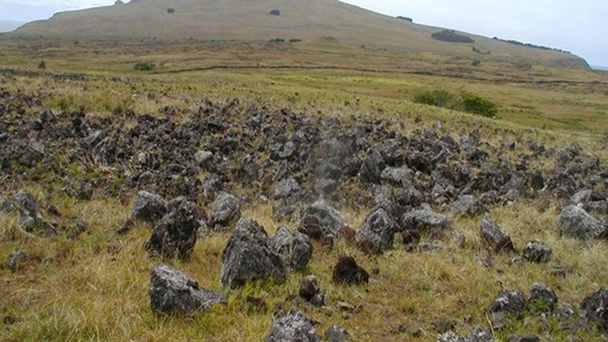 rapa-nui-rock-garden