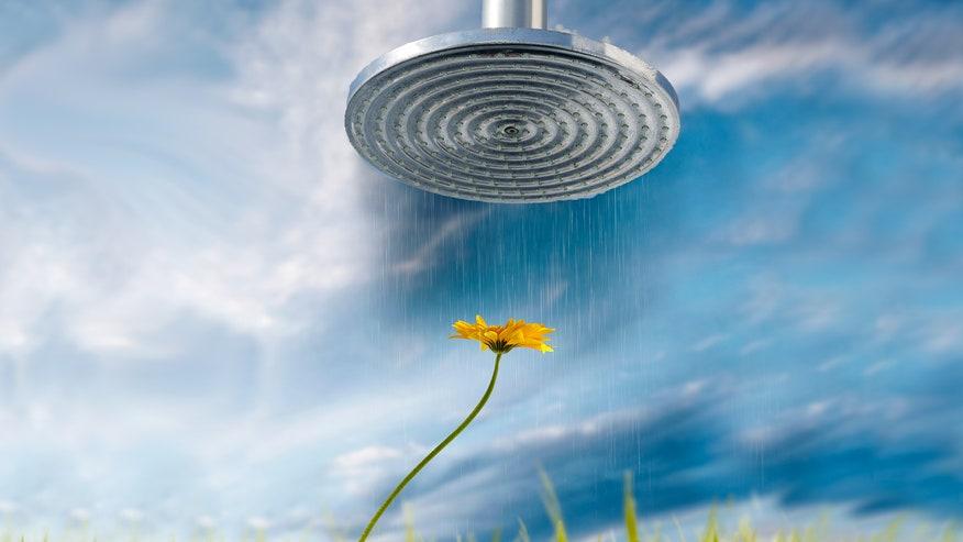 showerflower-43321ba2e764e410VgnVCM100000d7c1a8c0____