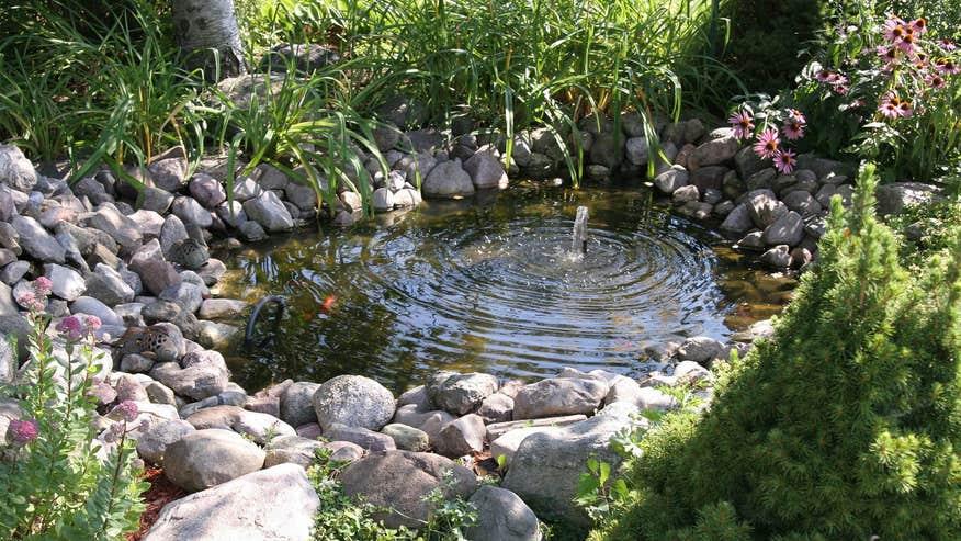 aquatic-garden-05146fc045316510VgnVCM100000d7c1a8c0____