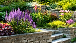 What are you waiting for? Here are some front yard landscaping ideas to take care of now before summer's over.  The post Front Yard Landscaping Ideas to Try Now Before It's Too Late appeared first on Real Estate News and Advice - realtor.com.