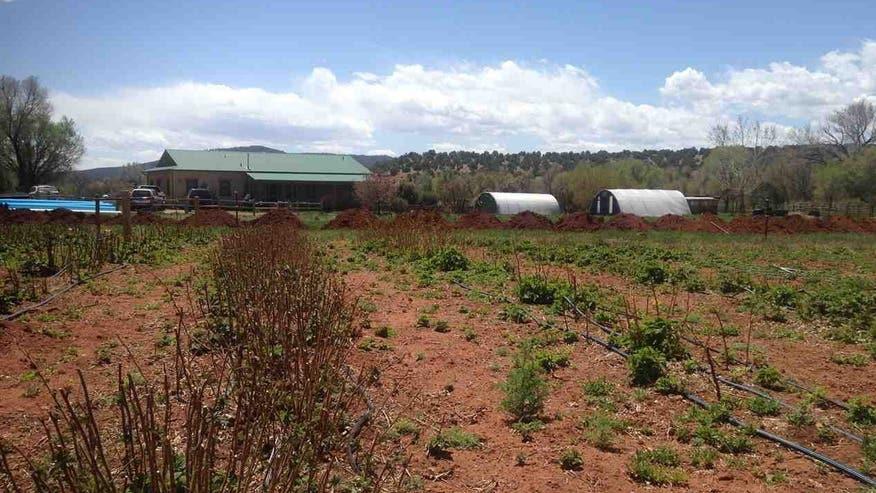 Hobby-Farms-Ribera-NM-e147017574910-39ae715cd4156510VgnVCM100000d7c1a8c0____