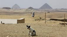 For the past  years, scientists have been exploring a cemetery in Egypt whose origins are mysterious.