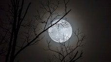 There's a Blue Moon in the sky tonight — but that doesn't mean the lunar surface will turn indigo.