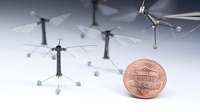 Fly-sized robot takes first flight
