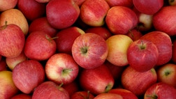 October is National Apple monthand it's time you knew your apples.