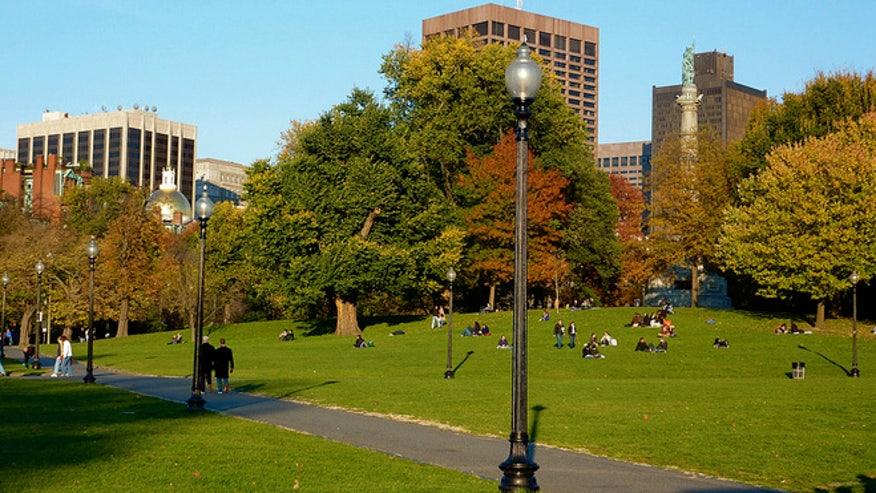 boston_common.jpg