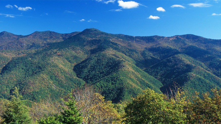 mount mitchell latino personals Each year, thousands of tourists visit mount mitchell, the most prominent feature  of  with the mountains' geological beginnings and dating back billions of years.