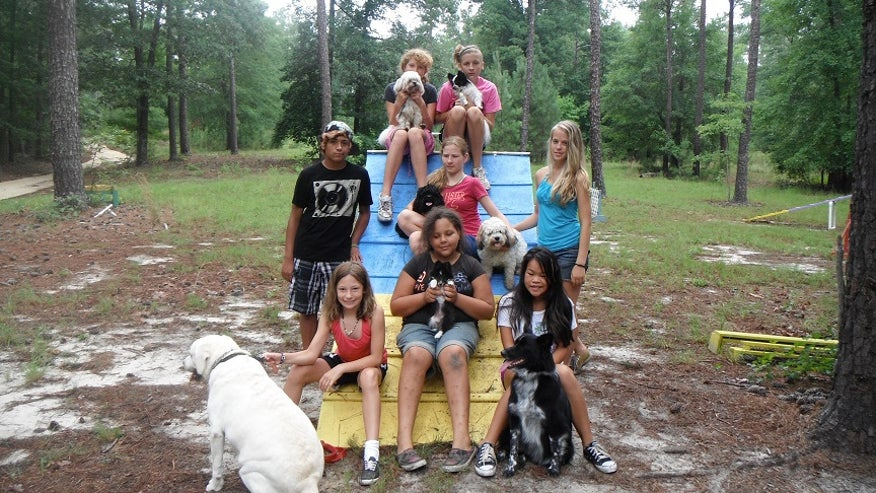 25 Great Summer Camps in the South – Top Education Degrees