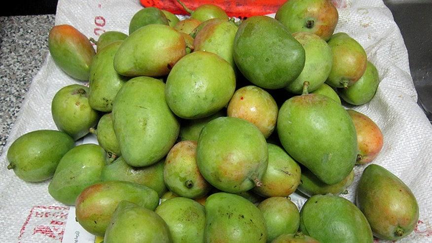 mangosillegal.jpg