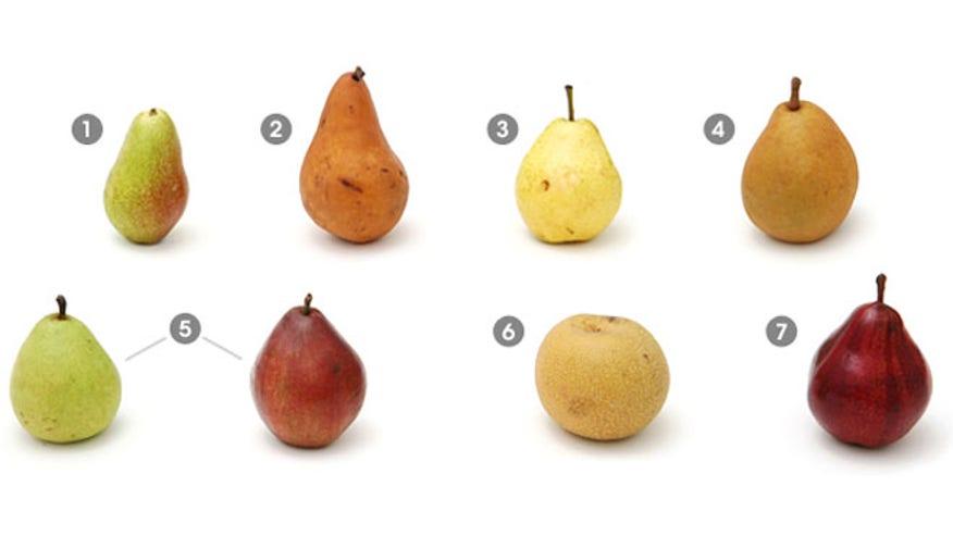 pears_guide.jpg